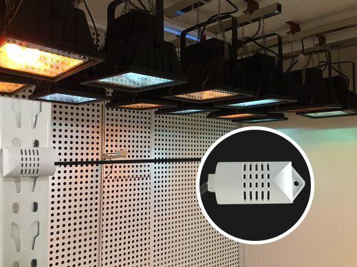 頂置光源人工氣候室_800x800.jpg