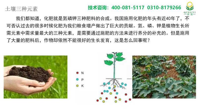 土壤氮磷钾 邯郸_01.png