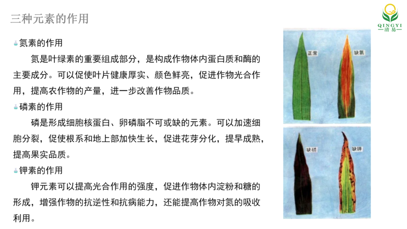 土壤氮磷钾 邯郸_02.png