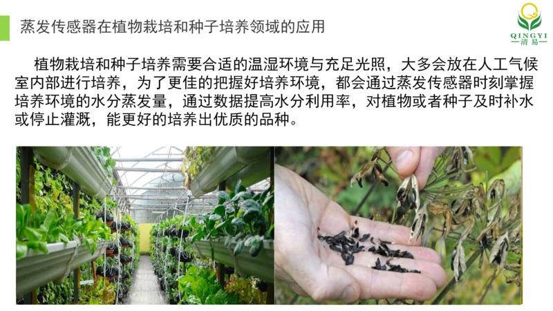 蒸发传感器 修订1 邯郸_05.png
